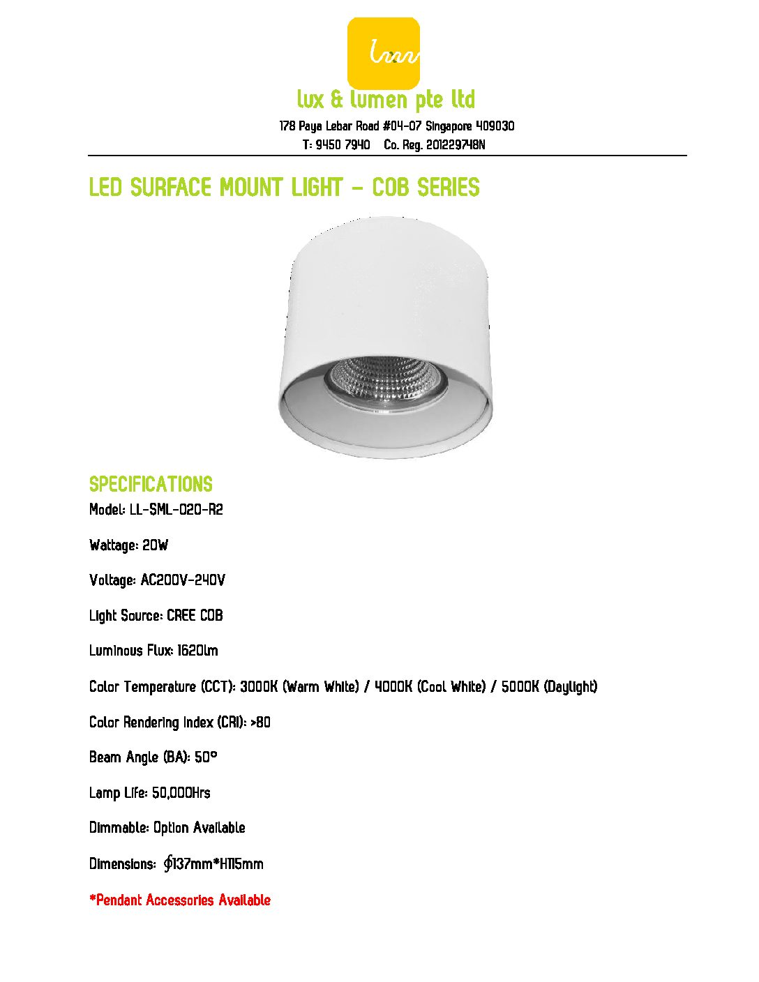 LED Surface Mount Light COB Series R020