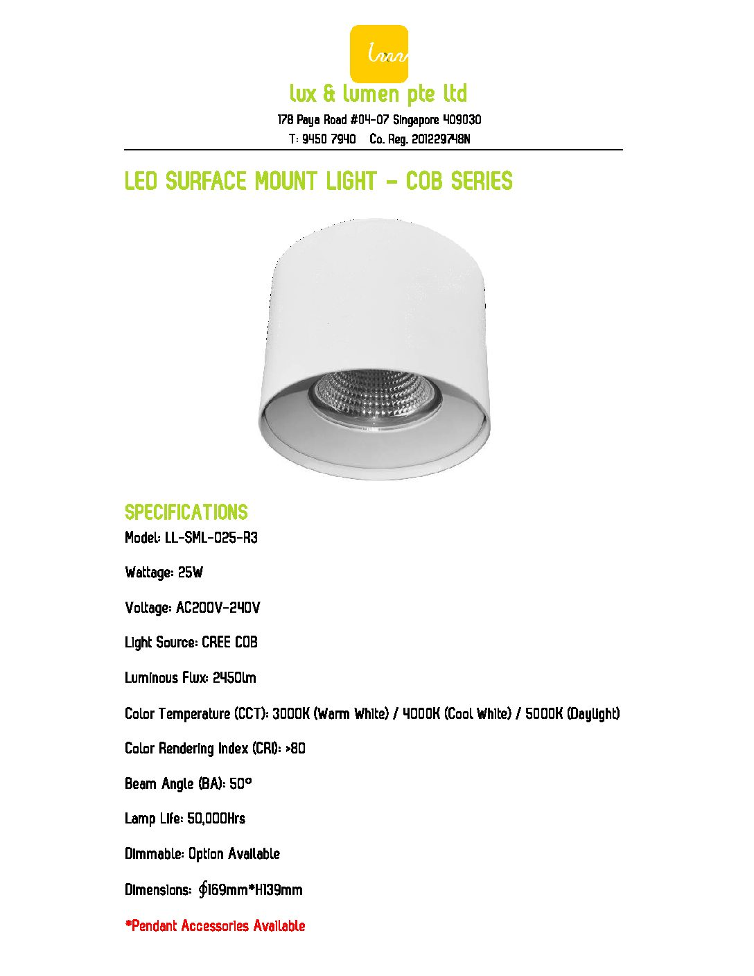 LED Surface Mount Light COB Series R025