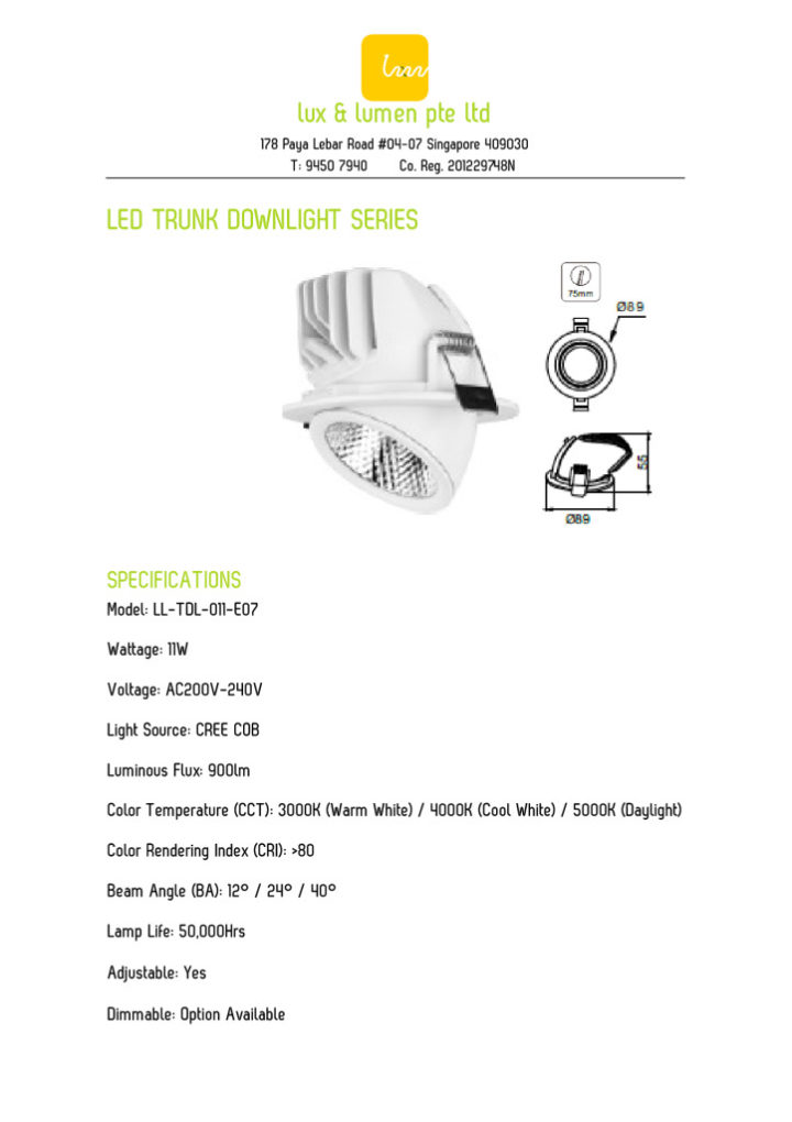 LED Trunk Downlight Series 011